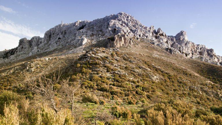 Escursione di trekking a Monte Albo (Montalbo)